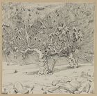 Fig-tree Valley of Hinnom - James Tissot.jpg