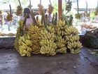 Kurunegala Fair Plantains2.jpg