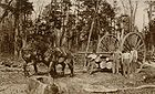 Logging wheels 1915 001.jpg