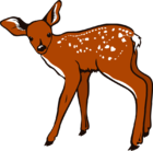 White-Tailed Deer Fawn 001.png