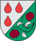 Coat of Arms of Olaine Latvia 01.png